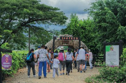 La uva atractivo turístico del Pacífico Colombiano